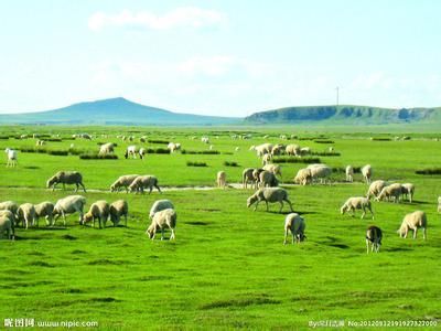 内蒙古天气预报_内蒙古天气预报一周7天10天15天内蒙古天气预报,内蒙古天气预报一周7天10天15天
