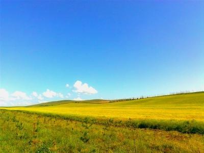内蒙古乌海天气预报一周7天10天15天