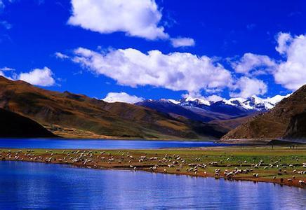 西藏山南天气预报一周7天10天15天