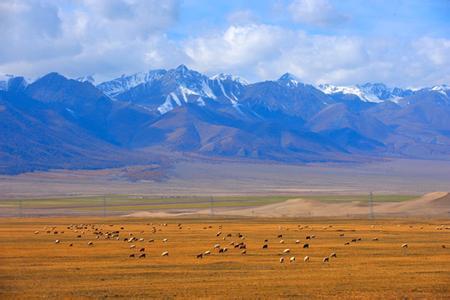 新疆哈密天气预报一周7天10天15天