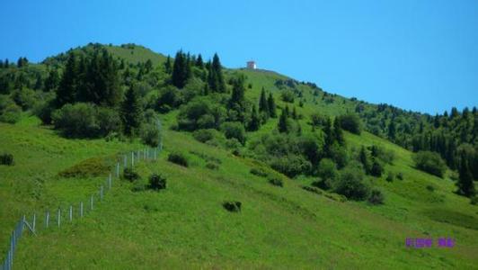 新疆博尔塔拉天气预报一周7天10天15天