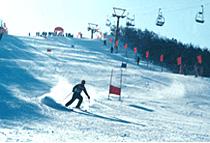 佳木斯卧佛山滑雪场天气